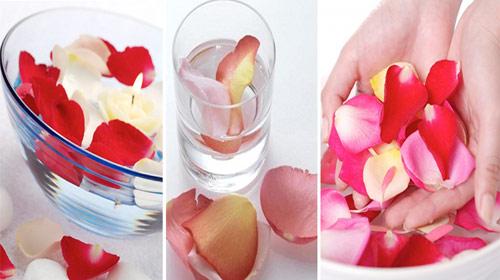 Chống lão hóa da bằng nước uống với hoa hồng