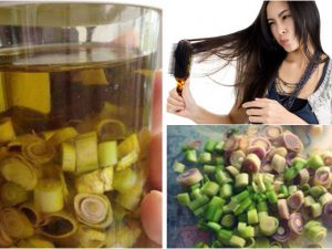 Sả và dầu oliu giúp tóc giảm gãy rụng hiệu quả